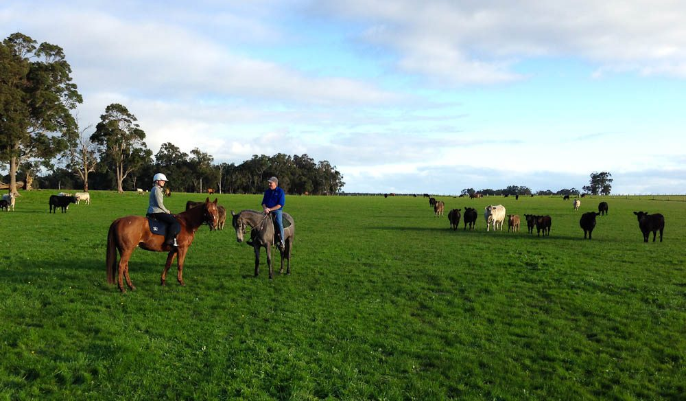 Megan with Paul out on the cattle farm.