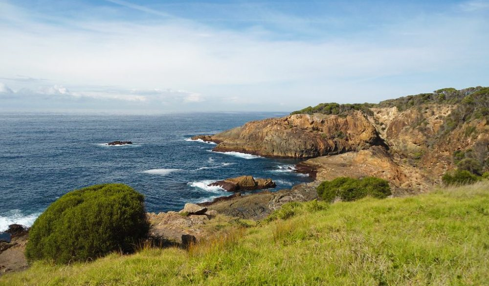 Sapphire sea - Tathra is ideal for surfers and fishermen alike