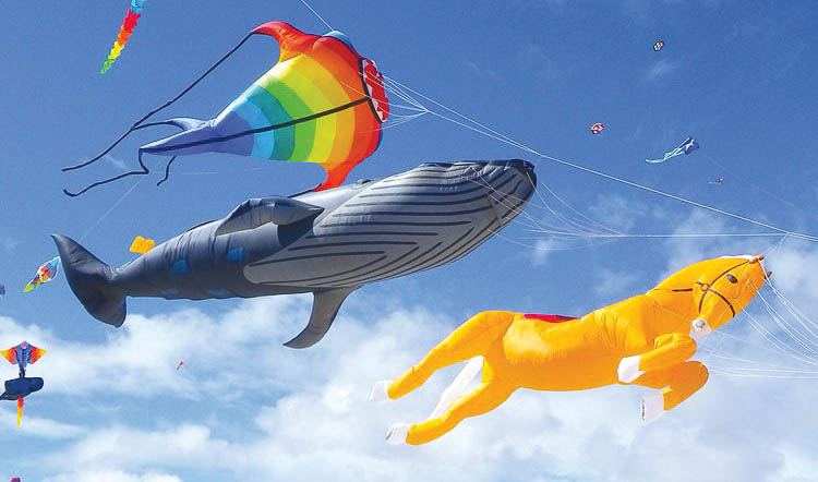 The Adelaide International Kite Festival.