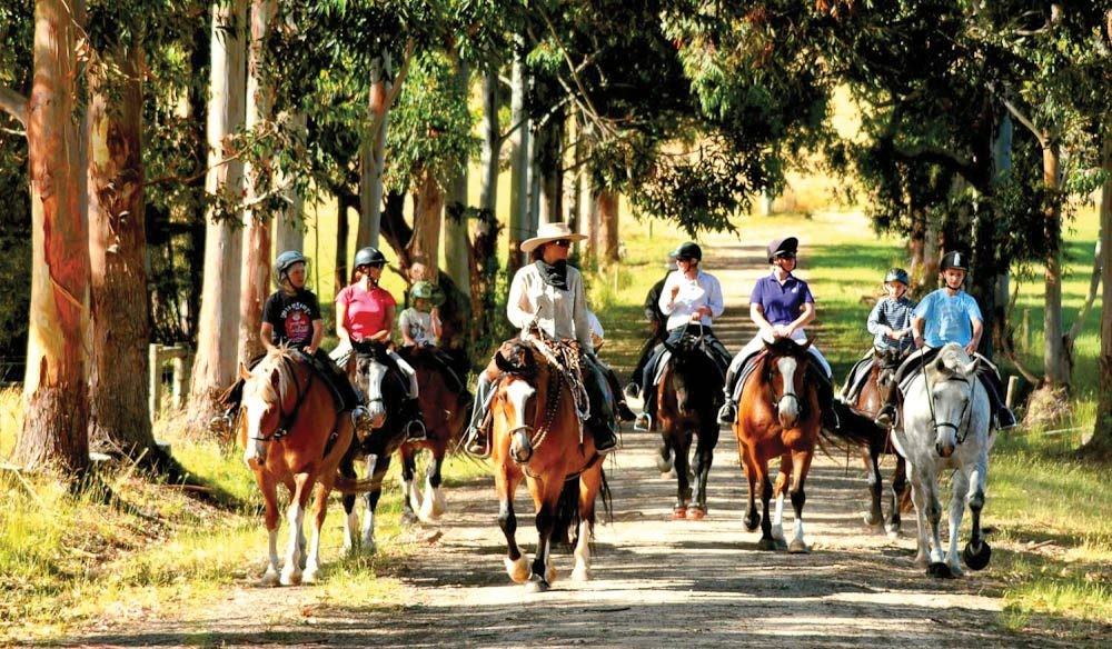 An easy amble around Margaret River on horseback, suitable for all (well, most of) the family.