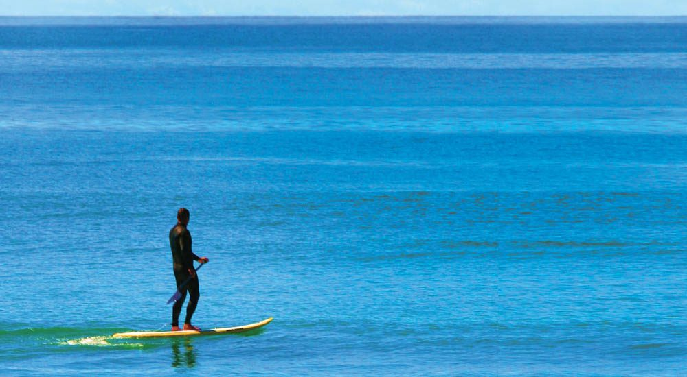 The stand-up revolution: Paddle boarding has taken off.