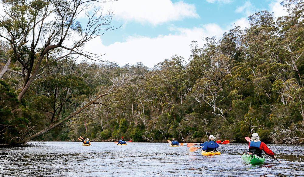Kayaking down the Ansons River is an optional activity