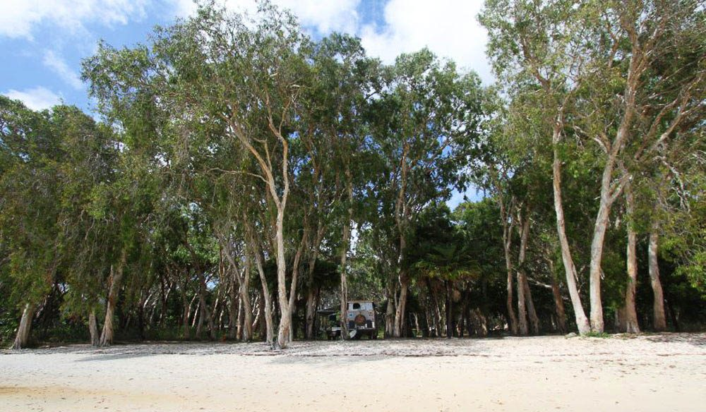 Elim Beach Camp, north of Cooktown, Queensland.