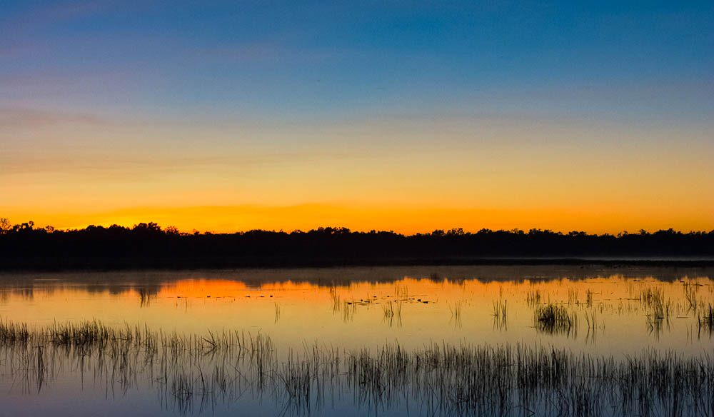 Dawn Mamukala Wetlands, Kakadu (Photo: Tracy Ryan).