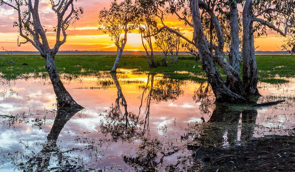 Floodplains at sunrise: practice your photography on safari at Top End luxury lodge, Bamurru Plains (photo: Richard I'Anson').