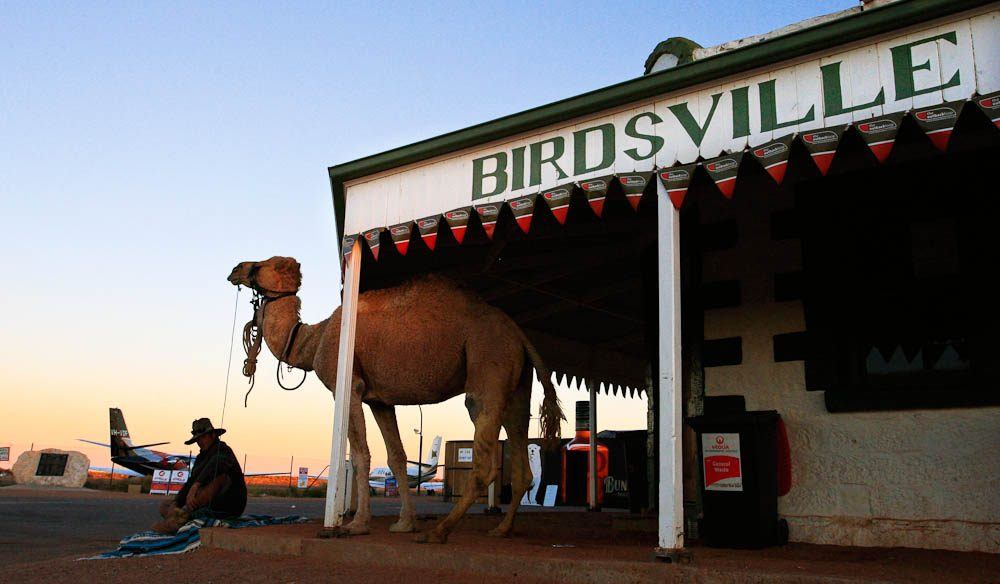 You know that any race starting at remote Birdsville is going to be a challenge.