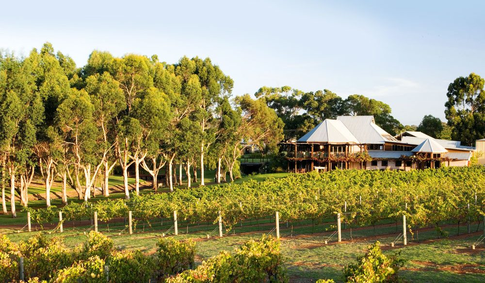 "Daniel Scott says Margaret River, WA, is the ""best for a gourmet break."""