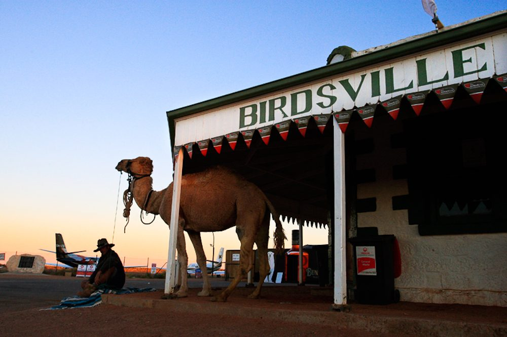 The ultimate outback spectator event: Birdsville Races.