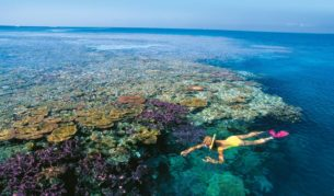 The Great Barrier Reef: A marine wonderland.