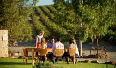 Oliver's Taranga Cellar Door, in Mclaren Vale, heart of the decadent Fleurieu, SA (photo: Adam Bruzzone).