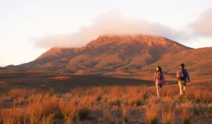 The Flinders Ranges centrepiece: Wilpena Pound (photo: Adam Bruzzone).