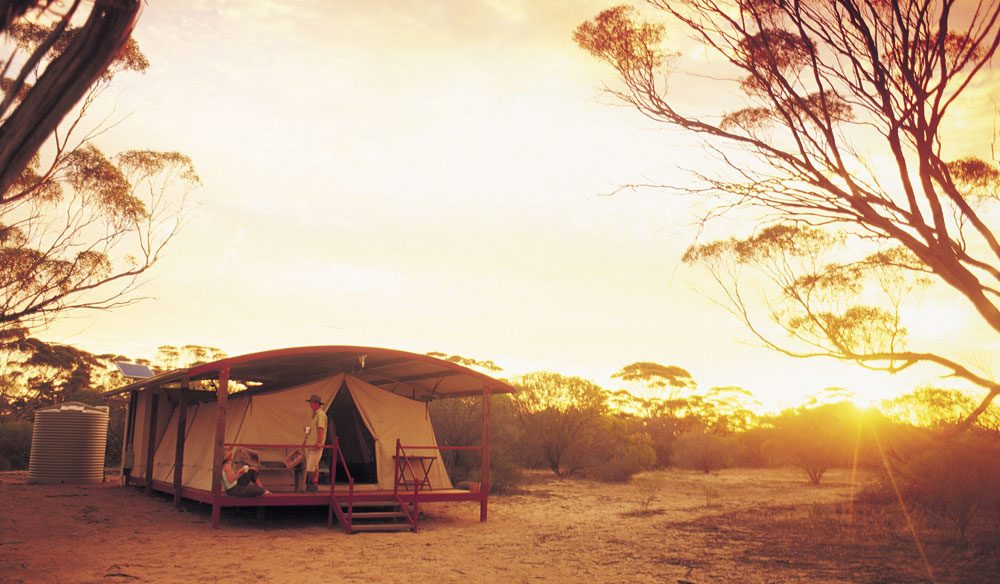 Kangaluna Camp, Eyre Peninsula (photo: Adam Bruzzone).