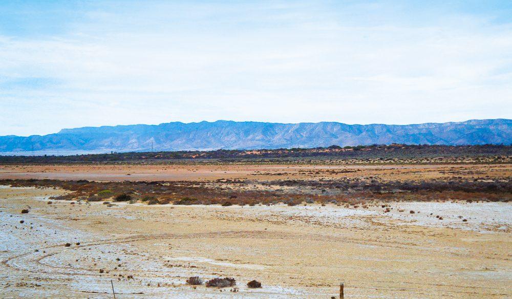 Flinder Ranges, SA.