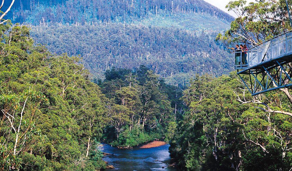 Bruny Island's Tahune Forest Reserve, Tasmania.