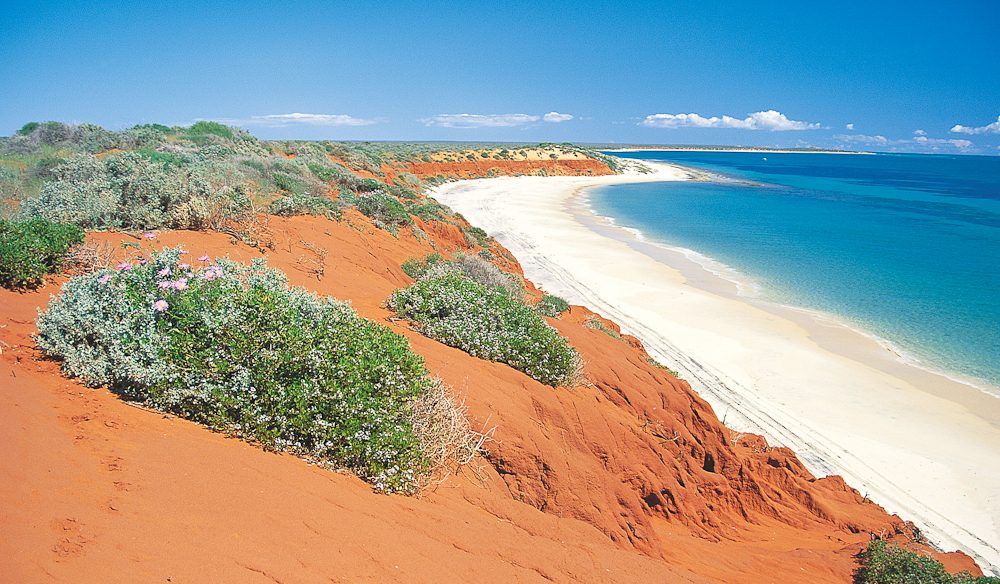 Red rolling dunes meet turquoise ocean: Bottle Bay, Francois Peron National Park.