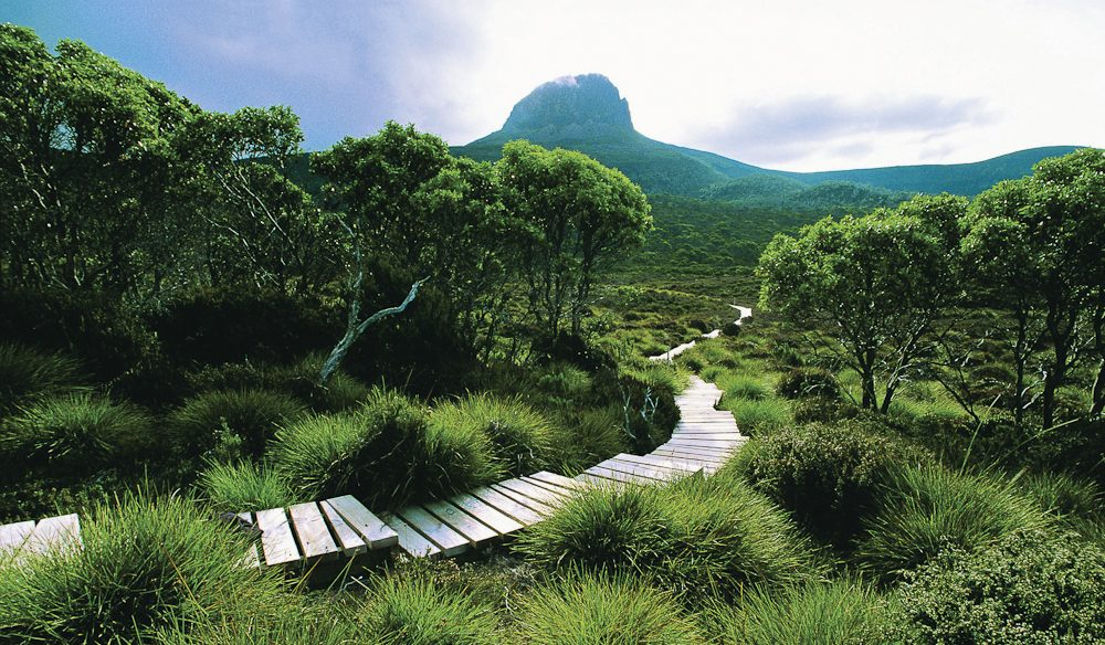 The Overland Track (via Cradle Mountain Huts): A definite change of scenery, if not pace, compared with most mainland hikes.