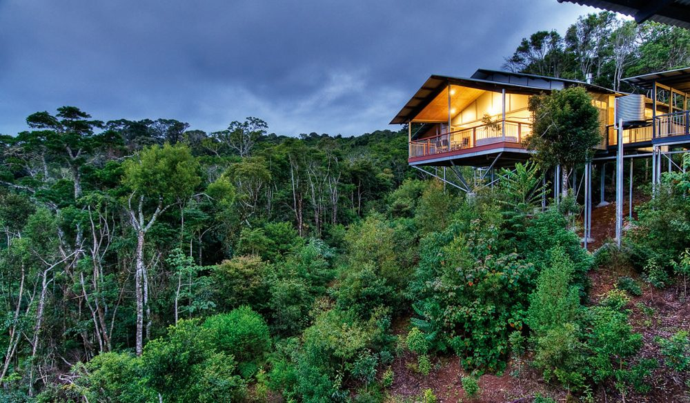 O'Reilly's Rainforest Retreat on the cusp of Lamington National Park