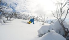 Winter adrenalin burn-off: Snowboarding the Snowy Mountains.