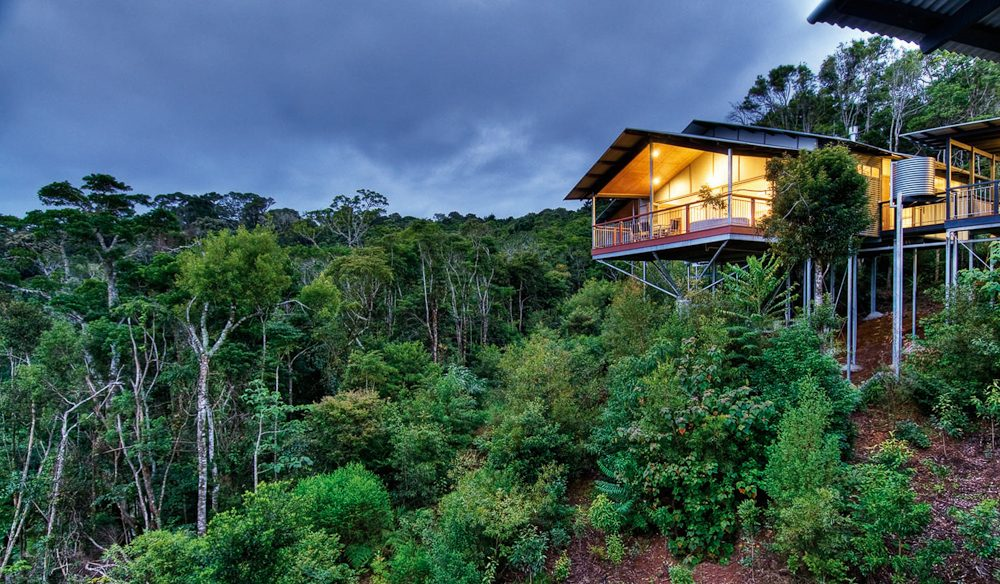 Mountain Villa, O'Reilly's Rainforest Retreat accommodation Lamington National Park