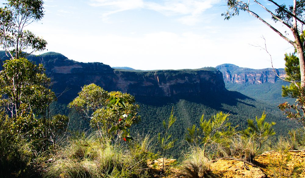 Looking out over Blue Mountains National Park from the Anvil Rock lookout.