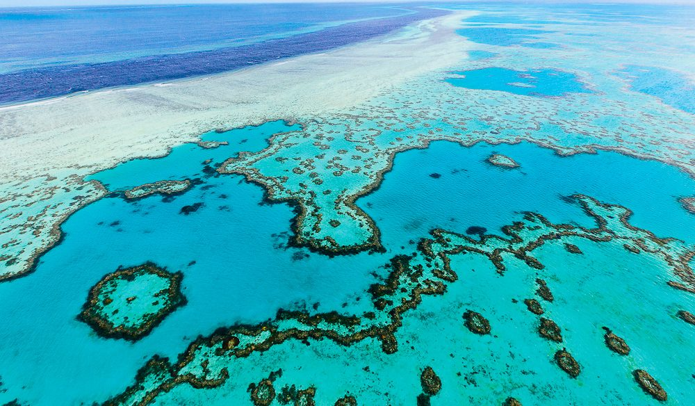 A new definition of joyflight: An aerial view of The Great Barrier Reef.