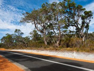 Cruising through the diverse Walpole-Nornalup National Park.