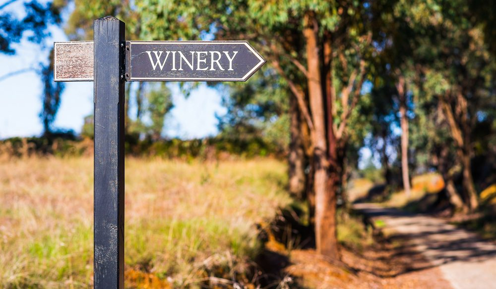 The trail winds around some great Victorian wineries - okay, if you insist. (Photo: Bec Taylor).