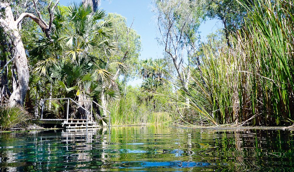 Bitter Springs, Elsey National Park, NT (photo: Let's Go Travel Australia).