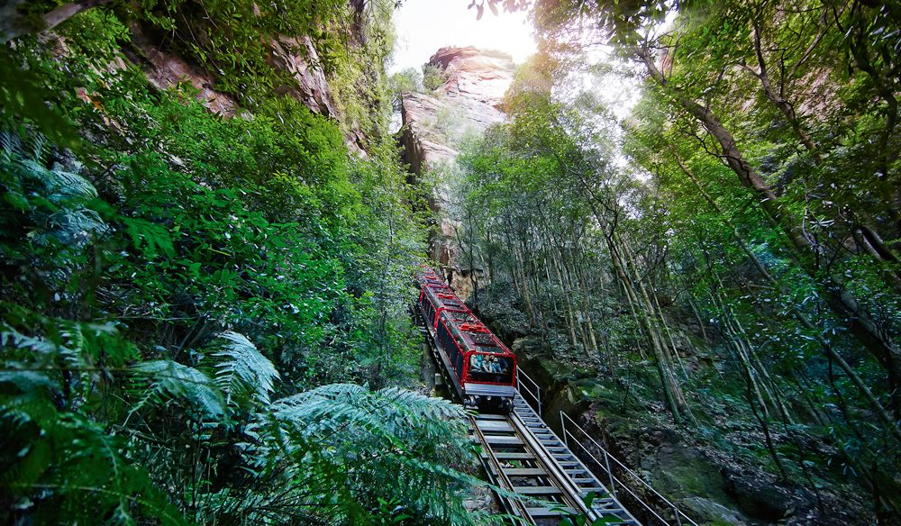 Steep: the Scenic Railway, Blue Mountains.