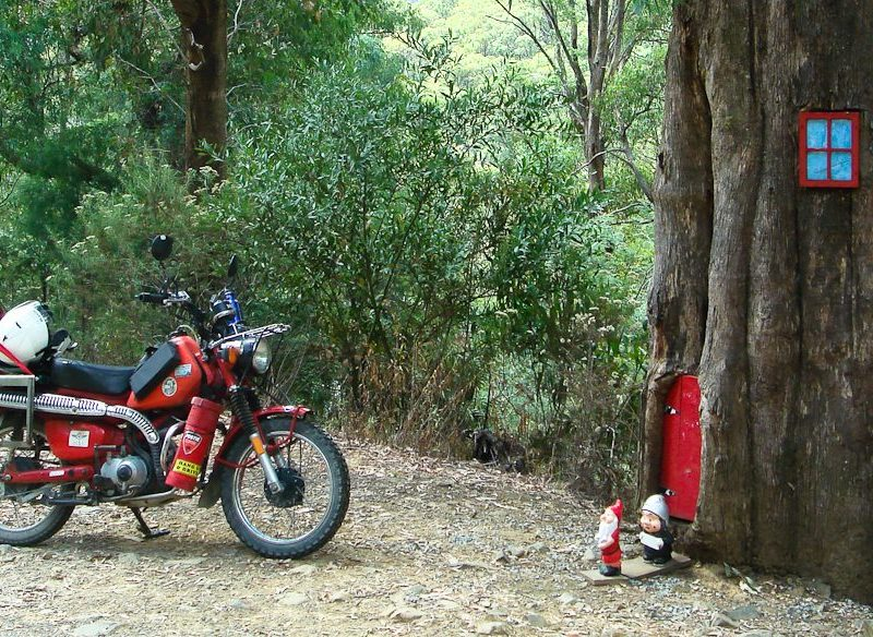 3. Mt Buller, Vic. In the base of a tree on the side of the road up to Mt Buller lives a little gnome family with a little gnome letterbox. We left our calling card.