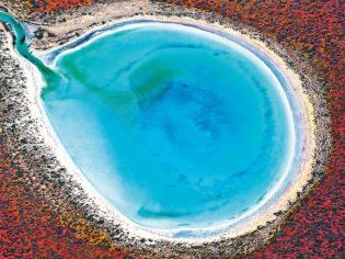 Big colours: Little Lagoon, Shark Bay, WA (photo: Tony Hewitt).