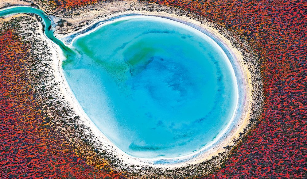 Big colours: Little Lagoon, Shark Bay, WA (photo: Tony Hewitt).