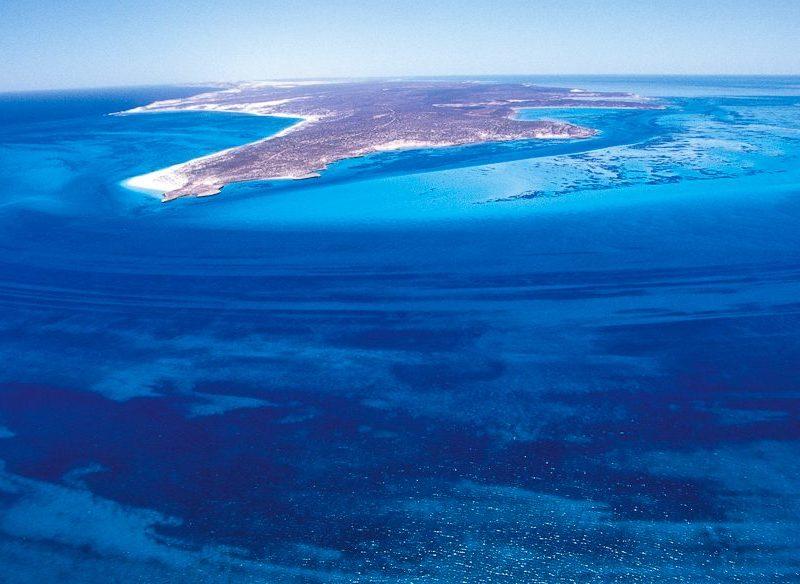 Dirk Hartog Island South Passage snorkelling off WA's Shark Bay.