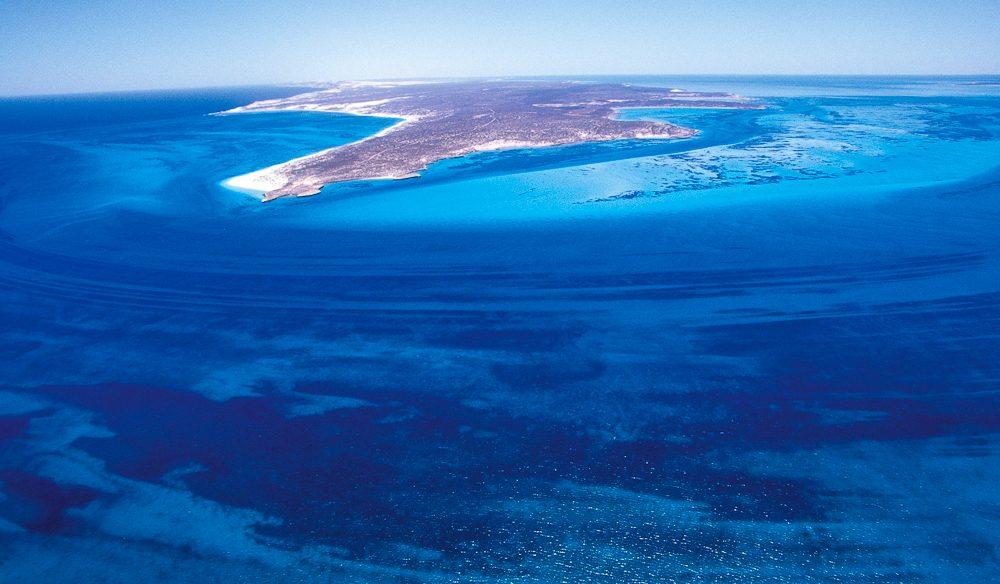 Snorkelling sensory overload: Dirk Hartog Island, South Passage, off WA's Shark Bay.