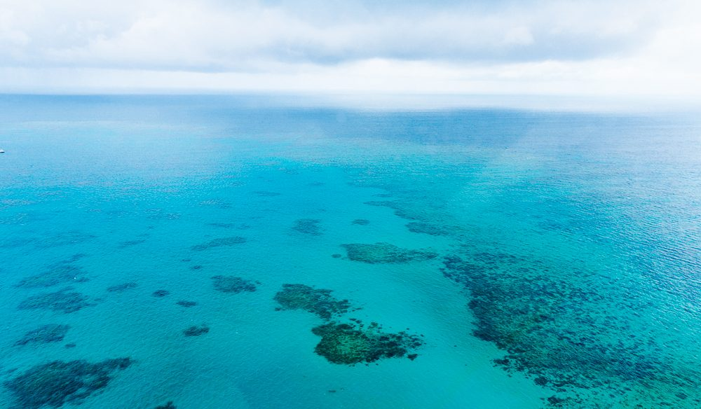 Photography Rule 1: Don't just stand there - Great Barrier Reef from the heavens. (photo: Melissa Findley)