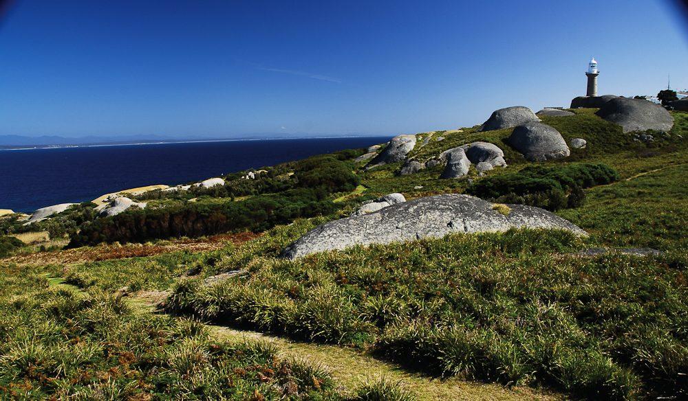 (NSW) South Coast secret: Montague Island (photo: Stuart Cohen)