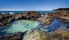 Rockpool snorkelling the Clarence