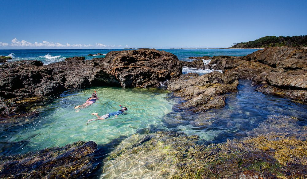 Rockpool time: Snorkelling the Clarence.