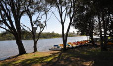 Family activities - Central Coast Holiday Parks