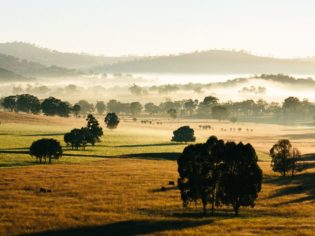 The secrets of NSW Central West - Orange and Mudgee.