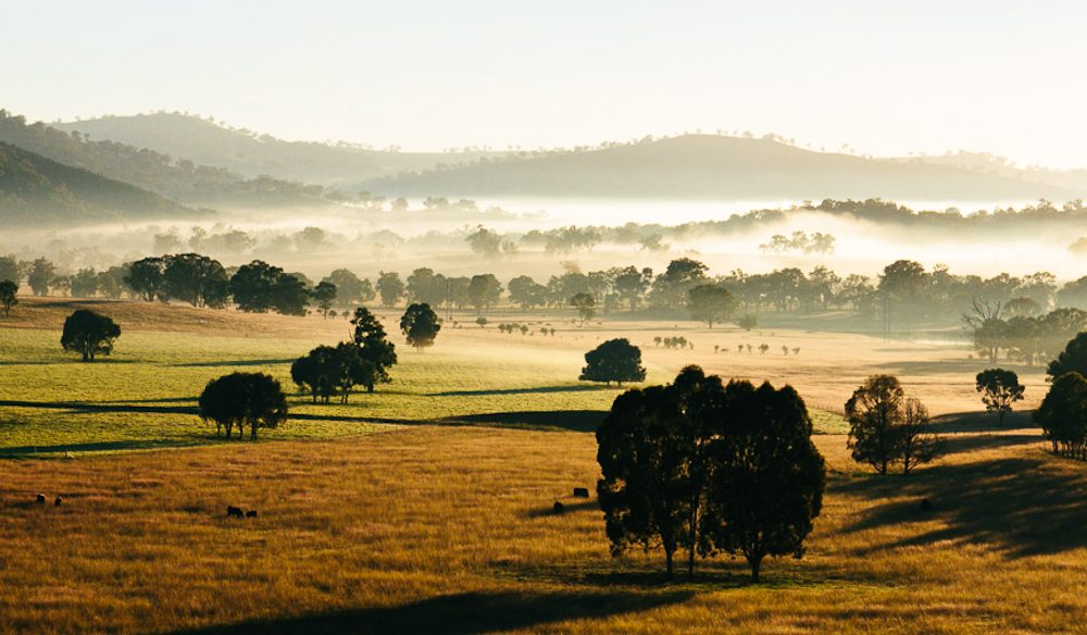 The secrets of NSW's Central West - Orange and Mudgee.