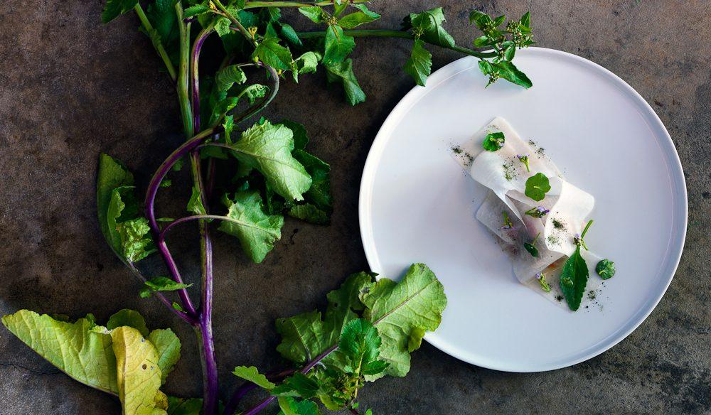 Typical pure, garnish-free food from Biota's menu.