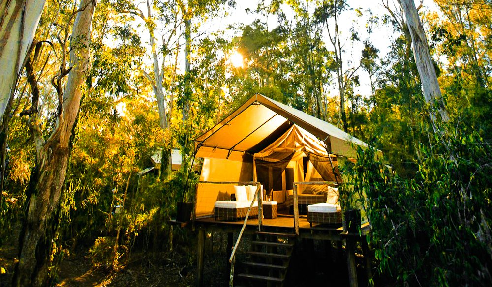Winner of one of the most hard-fought categories: Paperbark Camp glampsite, Jervis Bay.