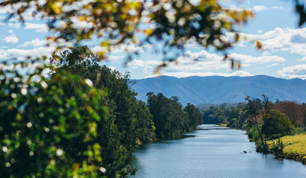 The Never Never River, on the outskirts of Bellingen (photo: Elise Hassey).