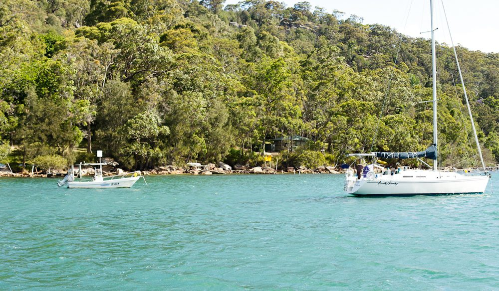A Palm Beach ferry is a simple and budget-friendly way to see stunning Pittwater (photo: Greta Stonehouse).