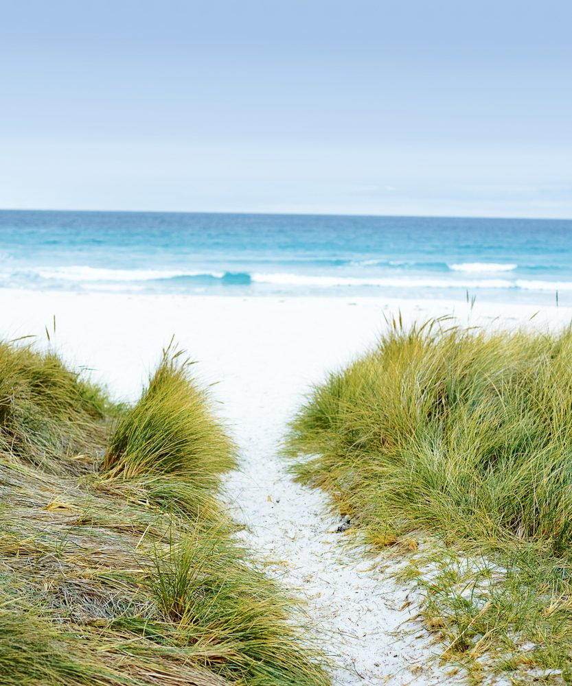 Pretty much typical of the blinding coastal beauty of Tasmania's east coast. (photo: Max Doyle)