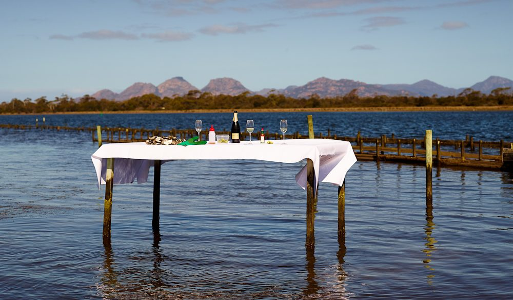 Waiting for you... freshly shuck and oyster and wash it down with nice wine. (photo: Max Doyle)