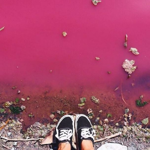 Pink Lakes come to Melbourne by @lauraalycebell
