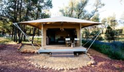 Flinders glamping, Ikara safari tents, Wilpena Pound Resort (photo: Elise Hassey).  (photo: Elise Hassey).