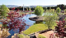 Mayfield Garden Oberon